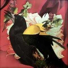 Birds N Berries
